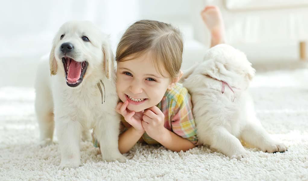 Какую собаку завести для ребенка
